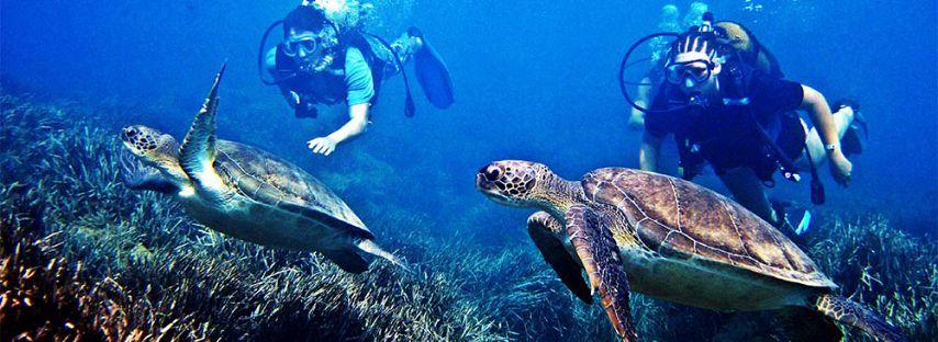 mauritius-underwater-excursions
